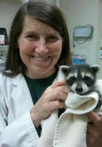 Dr. Lynette D. Greenwood